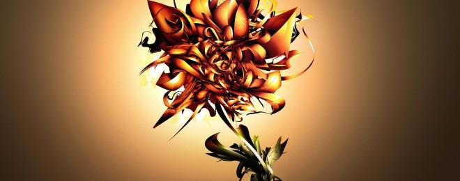 ws_Fire_Flower_1920x1200