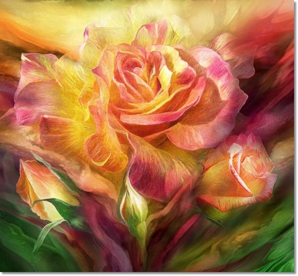birth-of-a-rose-sq-carol-cavalaris