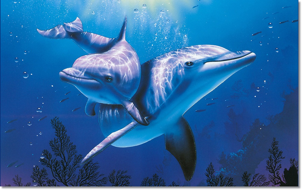 3d-dolphins-cartoon-wallpaper-picture