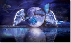 Butterfly_Moon_Dreams_by_mynylonsmile