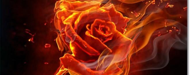 twin-flames-intense-love