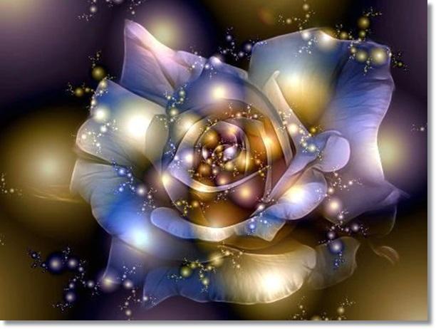 970adfd5804d8e92d4bc1e7a34cdf92d--art-fractal-rose-art