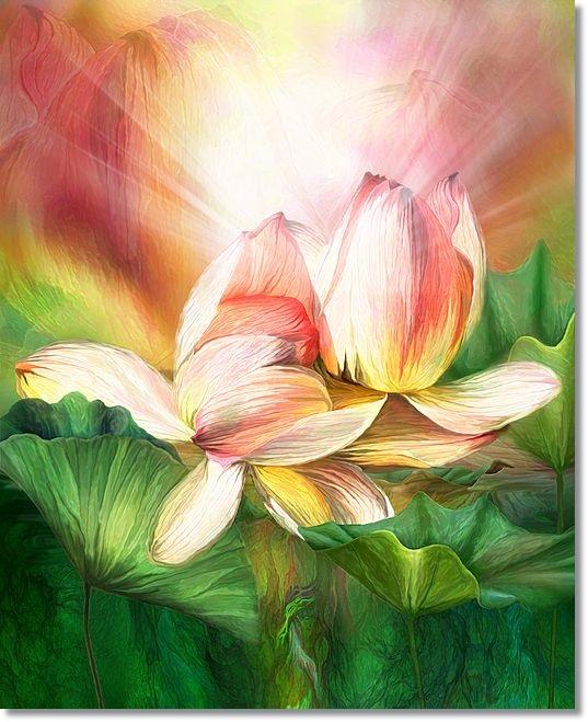 f146ecef063b05e6d2b4ffddd5733271--lotus-art-summer-art