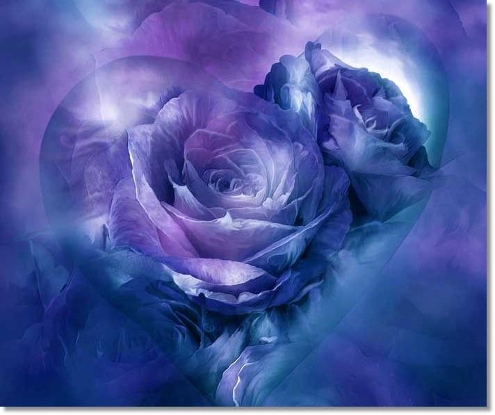 4b414c741ce35606b82403b4504d5052--purple-hearts-purple-roses