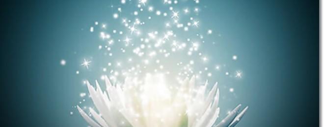14602178_ml-magical-lotus