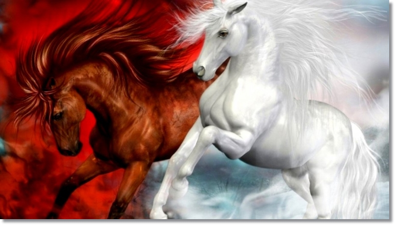 Horses-splendid-white-and-red-horse-fantasy-art-Hd-Wallpaper-915x515