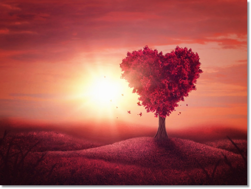Heart love tree
